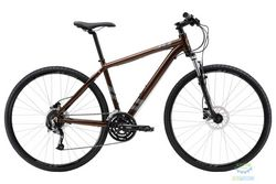 Велосипед 28 Apollo Transfer 30 рама - M Gloss Bronze/Gloss Charcoal 2017