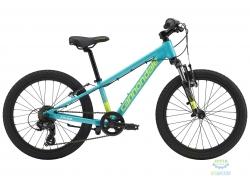 Велосипед 20 Cannondale Kids Trail TRQ OS 2019