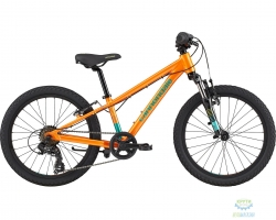 Велосипед 20 Cannondale Kids Trail CRU OS 2020