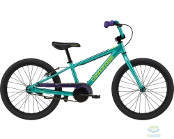 Велосипед 20 Cannondale Kids Trail SS TRQ 2020