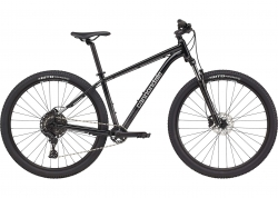 Велосипед 29 Cannondale TRAIL 5 рама - L 2021 GRA