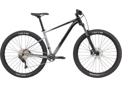 Велосипед 29 Cannondale TRAIL SE 4 рама - M 2021 GRY