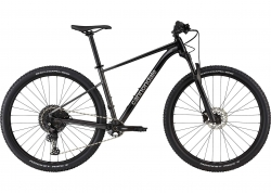 Велосипед 29 Cannondale TRAIL SL 3 рама - M 2021 BPL