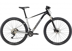 Велосипед 29 Cannondale TRAIL SL 4 рама - S 2021 GRY