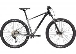 Велосипед 29 Cannondale TRAIL SE 4 рама - S 2021 GRY