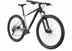 Велосипед 29 Cannondale TRAIL SL 4 рама - M 2021 GRY