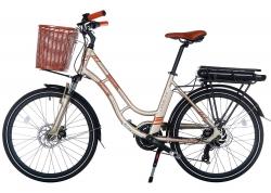 Велосипед Trinx 24 Sella 2.0 рама - 17 2021 Champagne-Gold